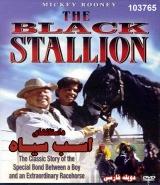 سریال داستانهای اسب سیاه - دوبله فارسی