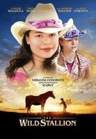 فیلم اسب وحشی (دوبله) - The Willd Stallion
