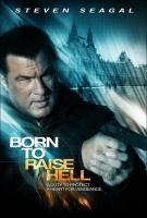 فیلم آتش بازی (دوبله) - born to raise hell
