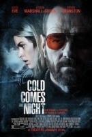فیلم روز بعد از حادثه (دوبله) - Cold Comes the Night
