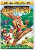 انیمیشن خرگوش بلا (دوبله) - the adventures of brer rabbit